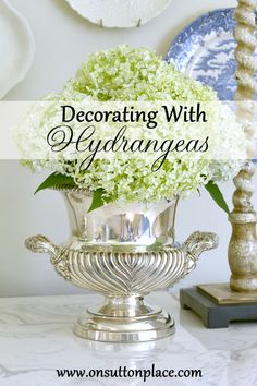 Get creative by using champagne buckets for decorating around the home. Design ideas and inspiration for incorporating these fun buckets into your decor Hortensia Hydrangea, Hydrangeas, How To Clean Silver, Champagne Buckets, Sutton Place, Annabelle Hydrangea, Cute Dorm Rooms, Home Look, Decorating Tips