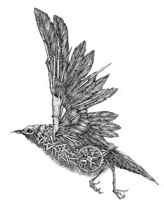Ink drawings I made for Ingmar Studio, MIA record label and my private collection. Fantasy Drawings, Bird Drawings, Pencil Art Drawings, Animal Drawings, Art Sketches, Fairy Tale Projects, Steampunk Bird, Mechanical Art, Robot Concept Art
