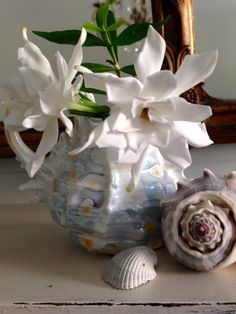 Gardenias from our farmhouse garden © Rhiann Wynn-Nolet Quince Cottage