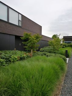 Landscaping For Your Location - How To Choose The Right Plants - House Garden Landscape Modern Landscape Design, Modern Garden Design, Garden Landscape Design, Modern Landscaping, Contemporary Landscape, Garden Landscaping, Modern Design, Modern Driveway, Front Yard Plants