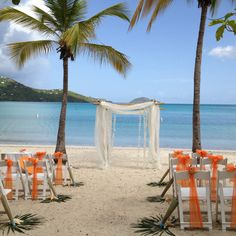 set up by perfect weddings of st thomas. Wedding Set Up, Perfect Wedding, Wedding Ideas, Orange Tie, St Thomas, To My Daughter, Ties, Shells, Weddings