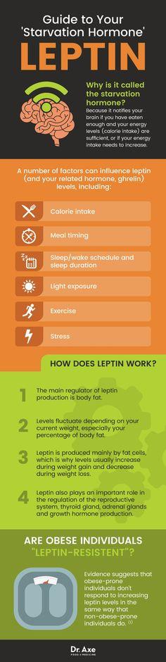 Leptin guide - Dr. Axe