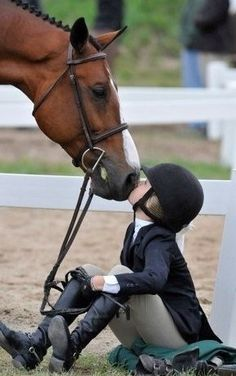 ANY picture of a horse KISSING a rider is PROOF that horses are not animals, they are more than that, especially for those who connect with them.