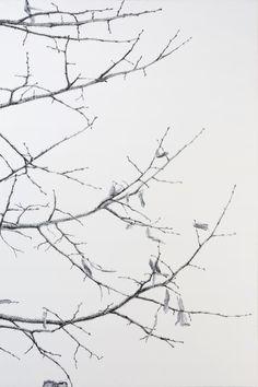 hermelando b m: Enjoy the charm of a dream in a reality. Ink on board [written tree]. Diptych (1) 50 x 75 cm. 2016