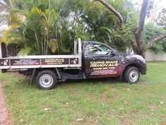 Snake Removal, Removal Services, Feral Cats, Cairns, How To Remove, Facebook, Animals, Animales, Animaux