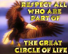 Circle of Life Native American Spirituality, Native American Proverb, Native American Wisdom, Native American Tribes, American Indians, Native Americans, American Indian Quotes, Native American Images, Native American Artwork