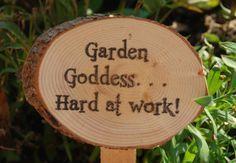 Humorous Garden Signs Ideal Gift For The Gardener On Your List – Garten ideen Plant Markers, Garden Markers, Garden Crafts, Garden Projects, Garden Ideas, Garden Workshops, Funny Garden Signs, Winter Greenhouse, Garden Quotes