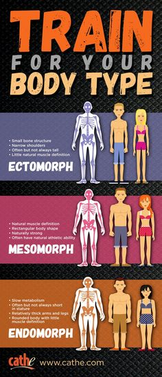 What body type or somatotype are you? Not everyone fits into a single body type Endomorph Ectomorph Workout, Endomorph Diet, Mesomorph Women, Body Type Workout, Workout Men, Cathe Friedrich, Fitness Motivation, Motivation Quotes, Slow Metabolism