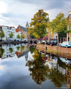 7 Things I Will Miss Most About Leiden - The Brave Dame Leiden is like Amsterdam but smaller and less touristy! Want to know more? Check out the article for a Leiden city guide.