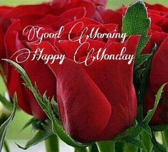 Happy monday... Happy Week, Happy Monday, Good Morning Good Night, Good Morning Quotes, Monday Images, Monday Blessings, Birthday Quotes, Mother Earth, Blessed