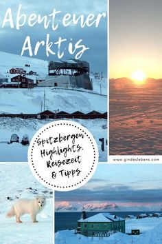 Longyearbyen, Tromso, Lofoten, Reisen In Europa, Places To See, Kind, Tricks, Highlights, Movie Posters