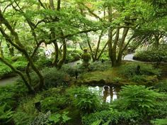 Butchart Gardens: Japanese Garden. #butchartgardens #moss