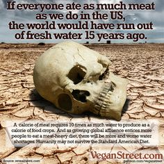 Animal agriculture is skyrocketing around the developing world, which is very bad news for our freshwater supply. A recent study financed by Nestle (a notorious waster of water themselves) shows just how precarious our water situation is if people keep ea Reasons To Be Vegan, Global Warming Climate Change, News Memes, Water Scarcity, Why Vegan, Vegan Vegetarian, Animal Agriculture, Vegan Memes, World Water Day