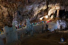 Die Höhlen von Postojna  zählen zu den bekanntesten Höhlen der Welt, da sie weltweit die zweitgrößte für Touristen erschlossene Tropfsteinhöhle ist.