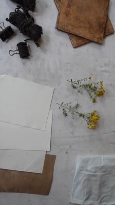 Eco-printing on paper video tutorial: St John's wort Fabric Painting, Fabric Art, Paper Art, Paper Crafts, Fabric Crafts, Natural Dye Fabric, How To Dye Fabric, Dyeing Fabric, Nature Crafts