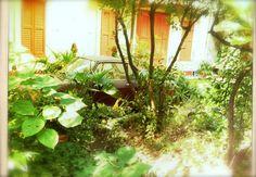 Villa Carmen e le sue auto d'epoca.