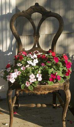 une vieille chaise en bois avec des pétunias