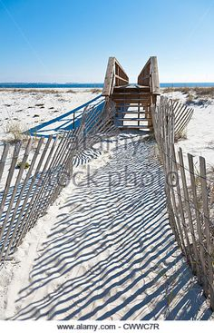 fenced-walkway-to-dune-crossover-keeps-visitors-off-sand-dunes-to-cwwc7r.jpg (347×540)