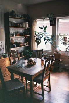 Cozy dining area with lots of wood and houseplants.