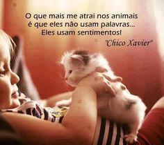 """""""O que mais me atrai nos animais é que eles não usam palavras... eles usam sentimentos!"""" #ChicoXavier #animais #sentimentos"""