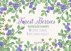 Forest Berries Collection Watercolor Elements by byhellopaper