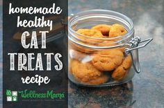 Cat Food Recipe Healthy Homemade Cat Treats Recipe - Wellness Mama - These homemade cat treats are healthy and a pet-favorite with coconut oil, coconut flour, tuna, gelatin, sweet potatoes and egg. Dog Treat Recipes, Cat Recipes, Dog Food Recipes, Recipies, Coconut Oil For Dogs, Coconut Flour, Diy Pet, Homemade Cat Food, Homemade Products