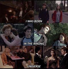 Vampire Daries, Vampire Diaries Damon, Vampire Diaries The Originals, Harry Potter Friends, Harry Potter Films, Funny True Quotes, Movie Quotes, Book Fandoms Unite, Funny Memea