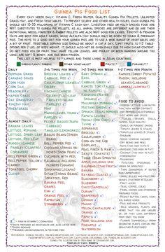Guinea Pig Food List by iamcaryl.deviantart.com on @DeviantArt