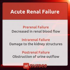 Acute Renal Failure Can be classified as prerenal failure, intrarenal failure, or postrenal failure. Can lead to chronic renal failure. Acute Renal Failure, Nursing School Prerequisites, Online Nursing Schools, Lpn Schools, Accelerated Nursing Programs, Medical Surgical Nursing, Mental Health Nursing, Nursing School Notes, Pharmacology Nursing