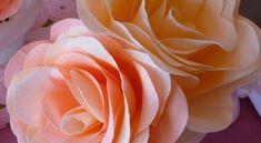 Seja para a sua festa ou para a sua casa, fazer rosa de papel crepom é a melhor saída para decorar e