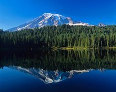 Image for Mount Rainier And Mirror Lake