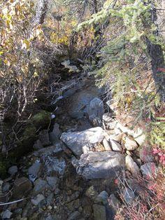 AUCTION ENDS TODAY 6PM PST! #Alaska Gold Panning Placer Mine #Sawpit Creek Mining Claim AK 40 acres