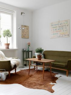 Charming apartment - nice cowhide rug.