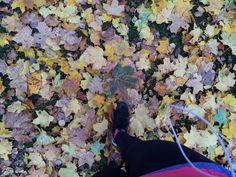 Autumn leaves Autumn Leaves, Grand Canyon, Nature, Painting, Travel, Art, Art Background, Naturaleza, Viajes
