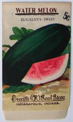 EVERITT'S SEED STORE,  Watermelon 178, Vintage Seed Packet