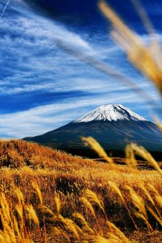 © ポテトMt. Fuji, Honshu Island, Japan