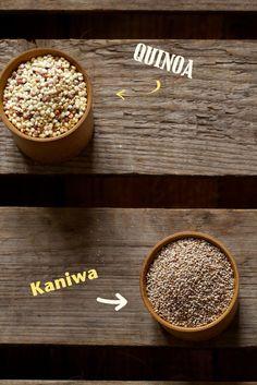 Chaudron pastel {Le Kaniwa ou Canihua : un bébé quinoa…} kaniwa - canihua, baby quinoa, pseudo-céréale, sans gluten / naturopathie