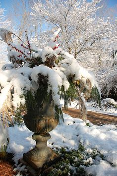 Urns in Winter garden