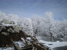 Snow079 by cheryl astern