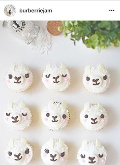 Llama cupcakes for party desert bar Llama Birthday, 11th Birthday, 1st Birthday Parties, Birthday Ideas, Birthday Cake, Alpacas, Fiestas Party, Cute Cupcakes, Cactus Cupcakes