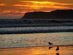 Coronado Beach. San Diego: Una Lección Magistral en Gestión Turística