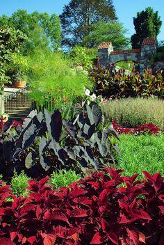 Walled Garden at the Biltmore Estate in Ashville, NC