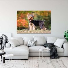 Seriously, how happy would this #wallart make you while you're cuddled on that couch with a book? #tinyDogBigArt #fuzzypantspets
