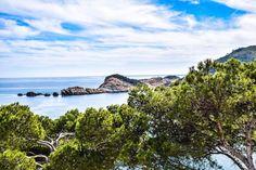 "25 Me gusta, 1 comentarios - Nix Luxe (@luxe_nix) en Instagram: ""Nature is THE most amazing thing. #nature #love #blue #green #sky #cloud #clouds #ocean #sea #tree…"""