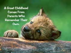 A Parent is a Childhood with Experience.