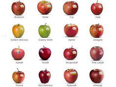 varietà mela alto adigeslide580