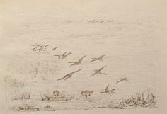 "Geese in Flight over a Lake by Charles Murray Adamson (1820-1894) Pen and ink drawing on paper In a cream conservation grade mount (matt) ​In good condition, as illustrated ​Drawing: 17.3 x 24.8 cm (visible); mount: 28 x 35.5 cm (11"" x 14"")"