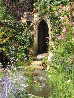 1000 Images About The Witches Garden On Pinterest