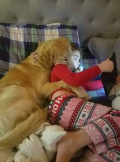 56 Ideas Funny Pictures Of Dogs Puppies So Cute For 2019 Funny Animal Videos, Funny Animal Pictures, Cute Funny Animals, Cute Baby Animals, Funny Dogs, Cute Cats, Funny Memes, Dogs And Kids, Cute Dogs And Puppies
