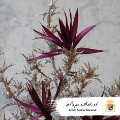 Andrea Merendi paperflowers exposition in Bassano del Grappa (Italy) - crepe paper Cartotecnica Rossi